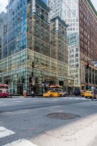 New York Reflections