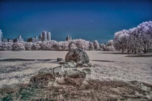 New York City infrared - Central Park