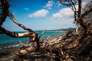 Italy Tuscany Beach