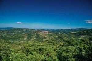 Italy Tuscany Landscape