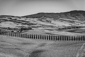 Italy Tuscany black&white Landscape